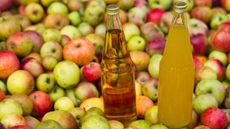 Die Privatbrauerei Schweiger warnt vor gefährlicher Apfelschorle (Symbolbild).
