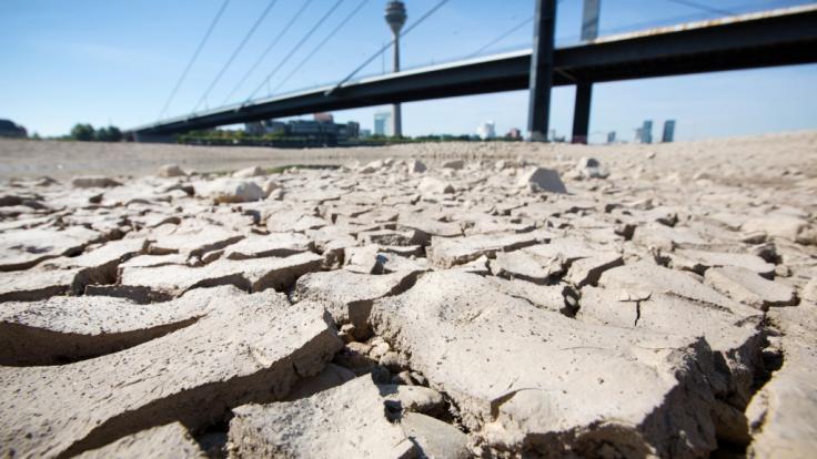Der Deutsche Wetterdienst warnt vor einem weiteren Dürresommer.