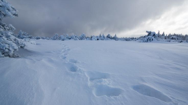 Tief Finja sorgt für 1,5 Meter Neuschnee.