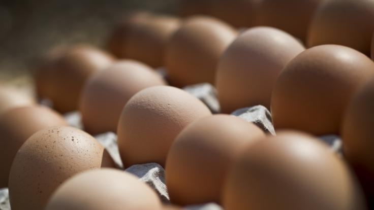 Edeka und Rewe rufen Eier zurück. (Foto)