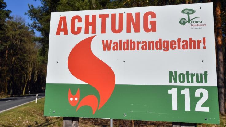 In Deutschland steigt die Gefahr von Waldbränden.