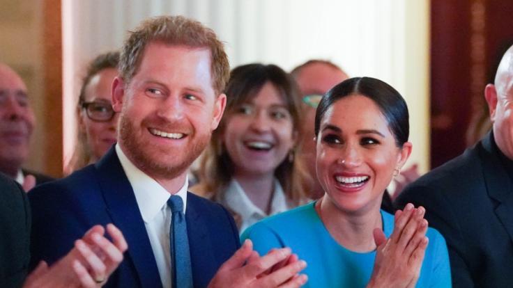 Prinz Harry und Meghan Markle haben ihren Hund Pula genannt. Eine romantische Anspielung an ihre Datingphase in Afrika. (Foto)