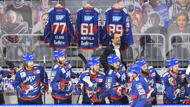 Eishockey Live - Champions Hockey League bei SPORT1 (Foto)