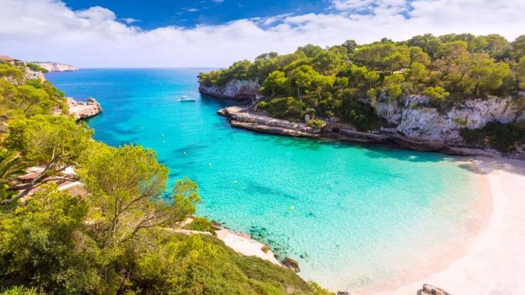 Goodbye Deutschland! Viva Mallorca! bei VOX (Foto)
