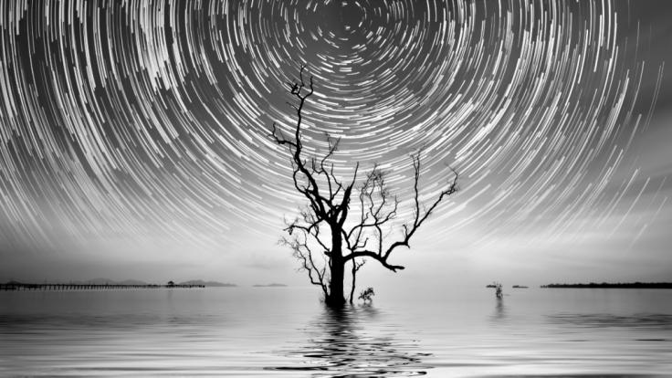 Der März-Neumond beschert uns eine magische Zeitqualität. (Foto)