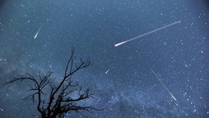 Im April ist der Sternschnuppenstrom der Lyriden zu sehen.