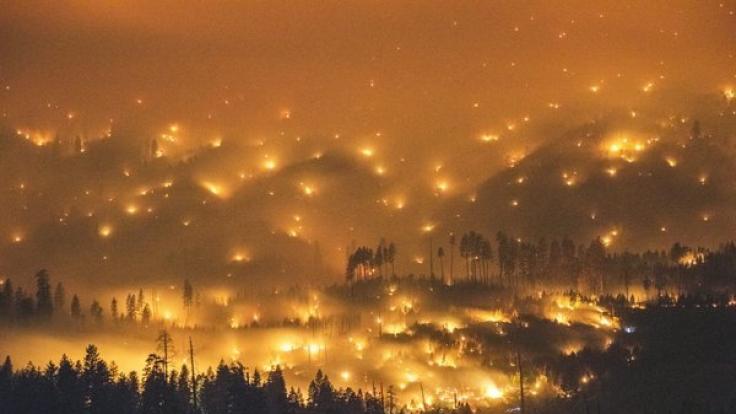 Die Feuer im Yosemite-Nationalpark verschlangen 330 Quadratkilometer Wald.