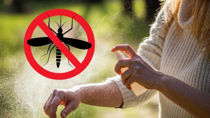 Mit wenigen Zutaten können Sie sich ein Anti-Mücken-Spray mischen. (Foto)