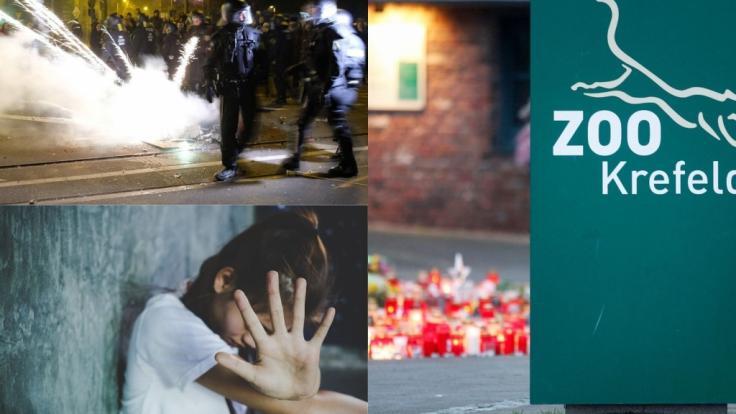 Schocker-News der Woche mit Feuer-Inferno im Krefelder Zoo, Ausschreitungen in Leipzig-Connewitz und Teenager-Tod nach Inzest-Geburt.