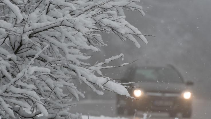 Nichts mit Frühling: Am Freitag wird es noch einmal frostig in Deutschland. (Foto)