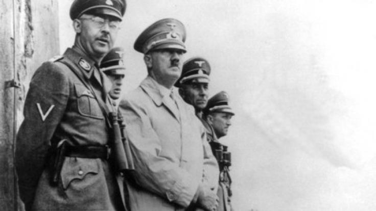 Die Polizei ermittelt gegen ein Kölner Auktionshaus wegen Hitler-Figuren. (Foto)