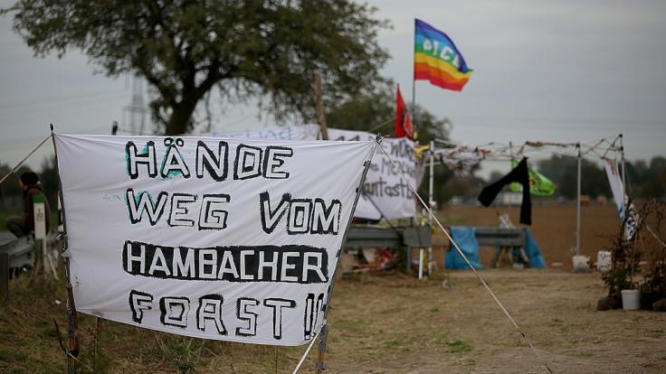 Das OVG Münster hat die Rodung des Hambacher Forst vorerst gestoppt. (Foto)
