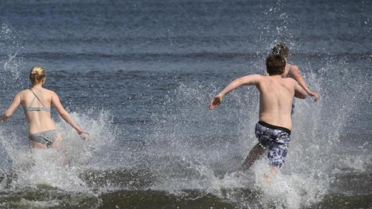 Wegen der Erderwärmung breiten sich in der Ostsee sogenannte Vibrionen aus. (Foto)