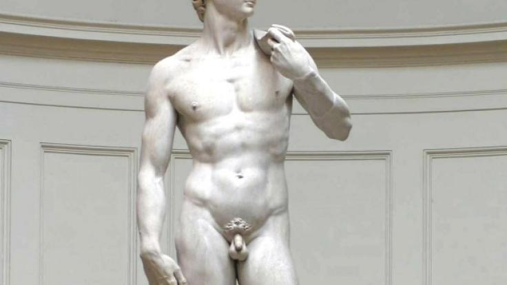Bei Michelangelos David ist alles dran. (Foto)