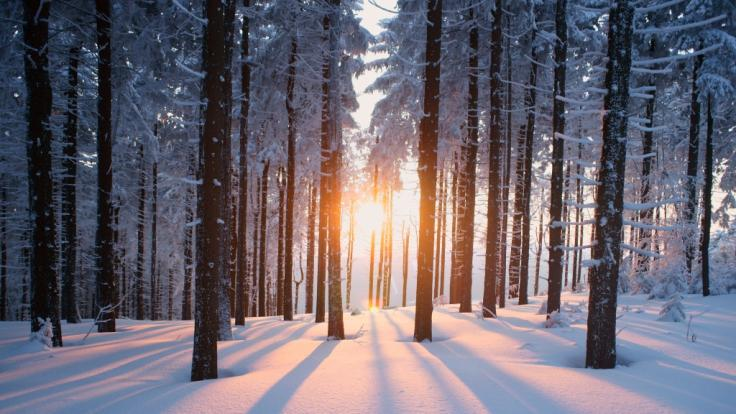 Wie wird das Winter-Wetter 2021/22? (Foto)