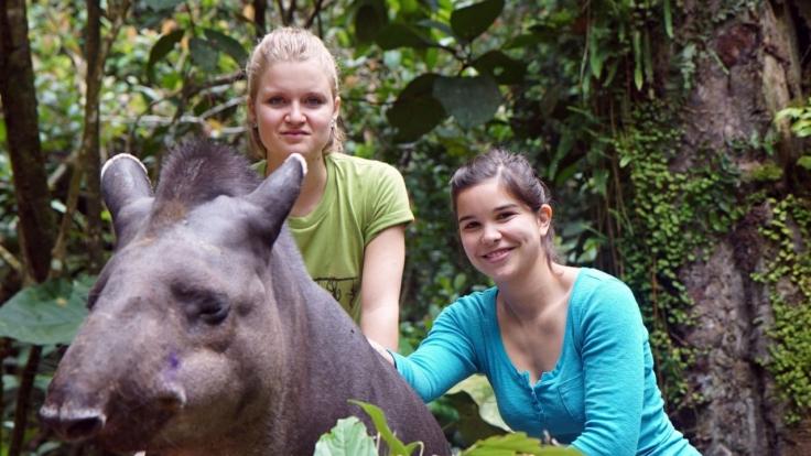 Anna und die wilden Tiere bei KiKA (Foto)