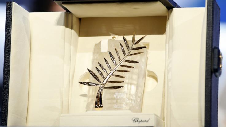 """Bei den 72. Internationalen Filmfestspielen von Cannes wird auch in diesem Jahr die """"Goldene Palme"""" verliehen. (Foto)"""