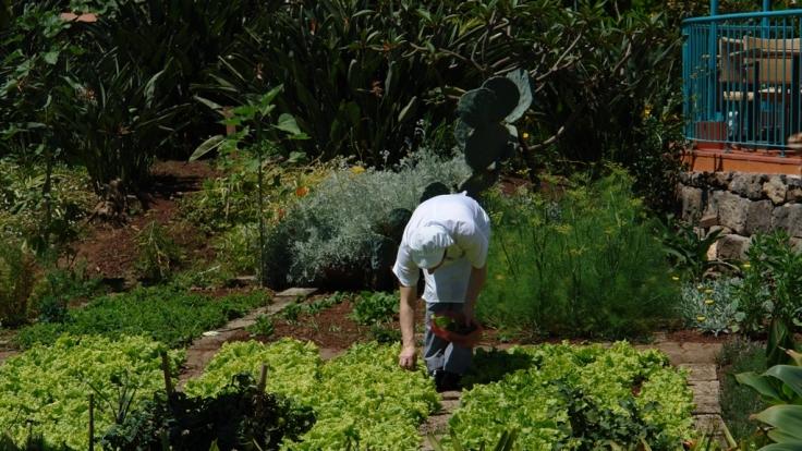 Frische ist Trumpf: Im Quinta Splendida kommen Kräuter und Gemüse direkt aus dem hoteleigenen Garten auf die Restaurantteller.