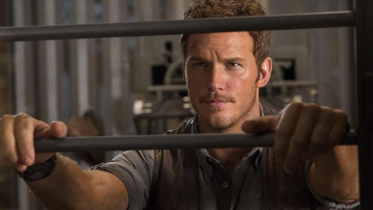 Owen (Chris Pratt) steht dem genetisch modifizierten Dino von Anfang an skeptisch gegenüber. (Foto)