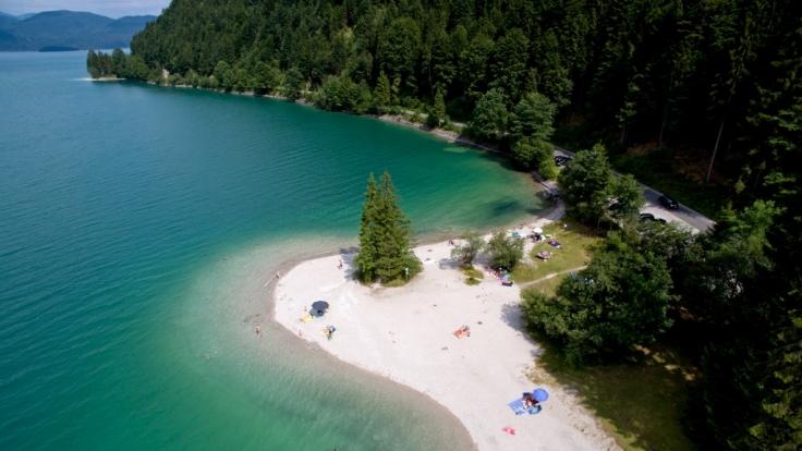 Kristallklar: der Walchensee in Bayern. (Foto)