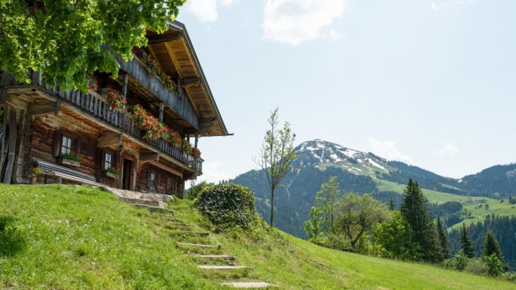 Den Gruberhof gibt es schon seit 400 Jahren. (Foto)