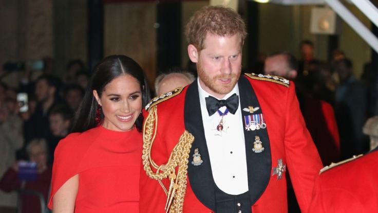 Im Sommer soll Prinz Harry ohne seine Frau Meghan Markle angeblich nach Großbritannien zurückkehren. (Foto)