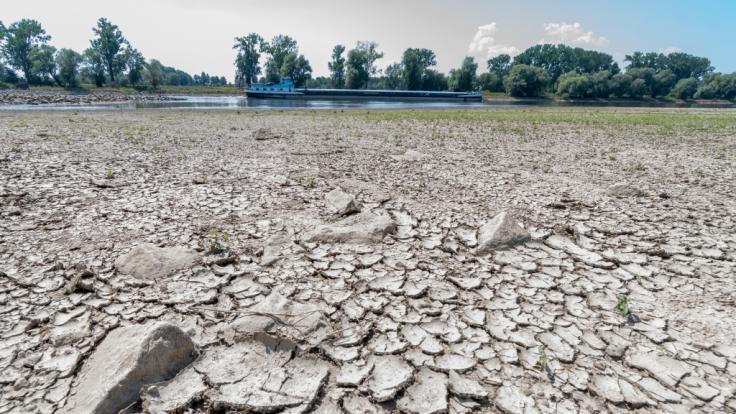 Durch die andauernde Hitzewelle führt die Donau derzeit Niedrigwasser.