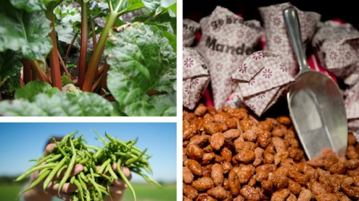 Wir essen sie täglich und doch können einige Lebensmittel lebensgefährlich oder gar tödlich sein.