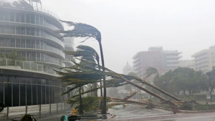 """Kurz nach """"Irma""""hat sich ein neuer potenziell gefährlicher Tropensturm gebildet. (Foto)"""