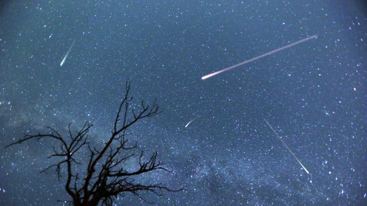 Die Ursiden verzaubern die längste Nacht des Jahres. (Foto)
