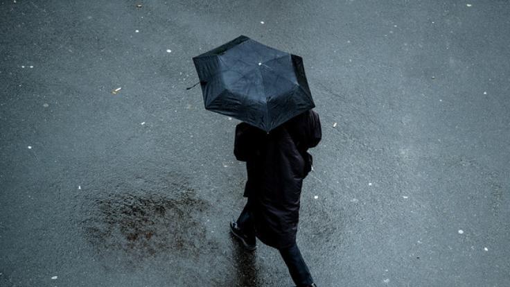 Der Frühling naht! In den kommenden Tagen steht Deutschland milderes Wetter ins Haus, das jedoch mit Niederschlägen und stürmischem Wind einhergeht. (Foto)