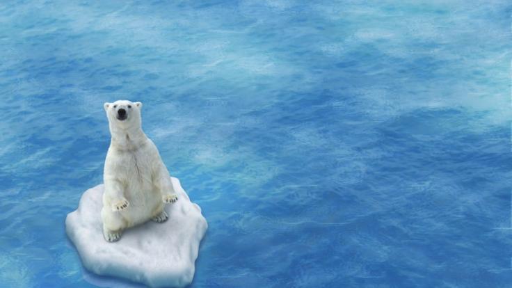 Der Klimawandel hat dramatische Folgen. (Foto)