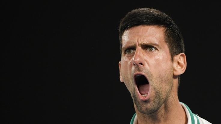 Djokovic trifft im Finale auf Medwedew. (Foto)