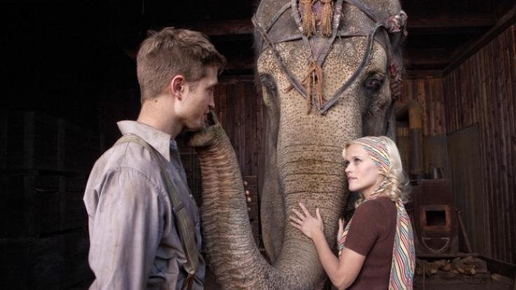 Elefantenkuh Rosie, Robert Pattinson und Reese Witherspoon: Tierquälerei nicht nur auf der Leinwand? (Foto)