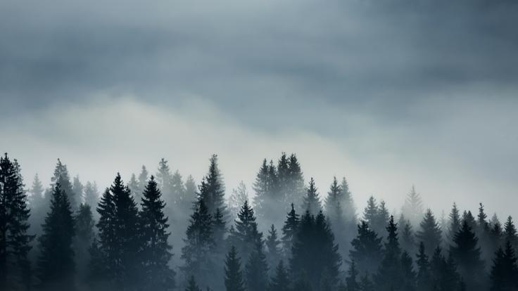 Deutschland droht in der neuen Woche dichter Nebel. (Foto)