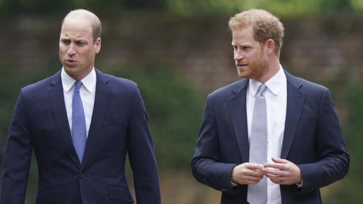 Gute Miene zum bösen Spiel? Prinz William und Prinz Harry. (Foto)