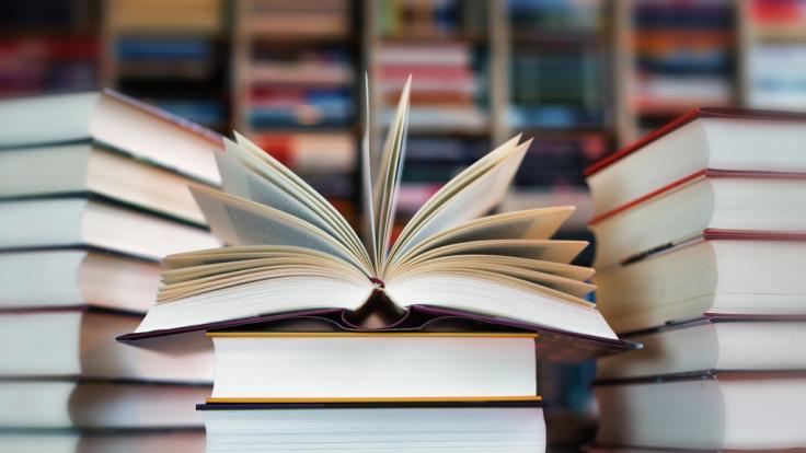 Das Buch wurde von einer Leserin stark kritisiert. (Foto)