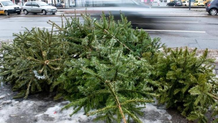 Eine Möglichkeit, den Weihnachtsbaum zu entsorgen: ihn vor die Haustür legen. In vielen Städten holen ihn dort zu bestimmten Terminen die Müllentsorger ab. (Foto)