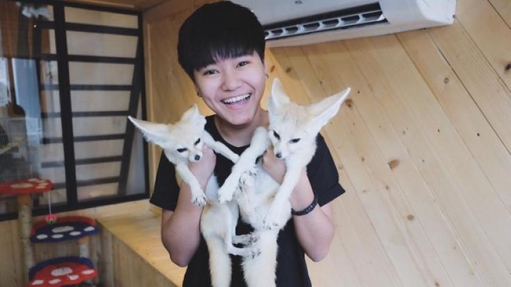 Die Tiercafés bieten auch exotischeres als Katzen und Kaninchen: In Bangkok kann man mit Füchsen oder Erdmännchen frühstücken. (Foto)
