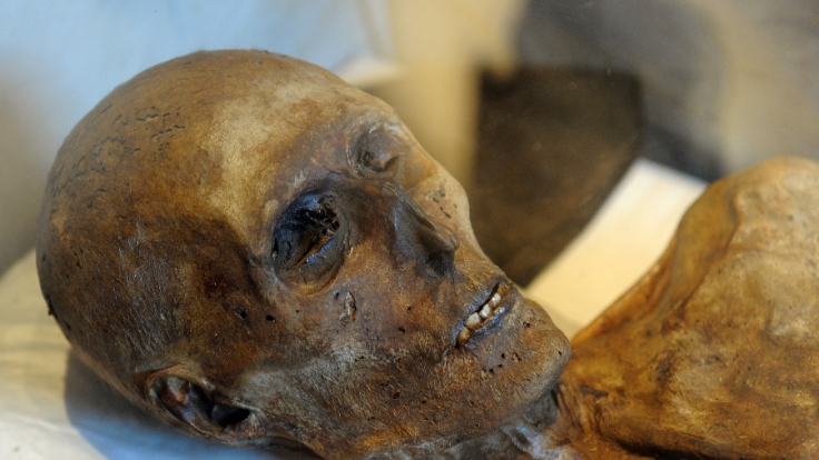 Die Beamten fanden die Leiche mumifiziert und verwest vor.