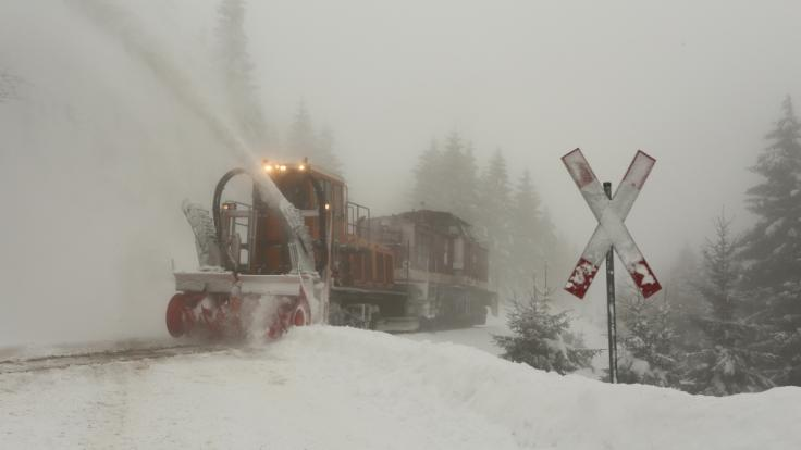 Der Schnee hat für Verkehrschaos im Südwesten gesorgt. (Foto)