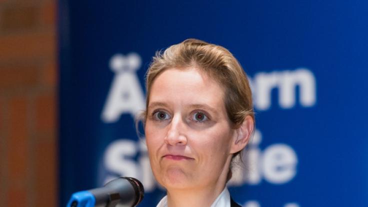 Alice Weidel wurde am 23. April zu Spitzenkandidatin für die Bundestagswahl gewählt.