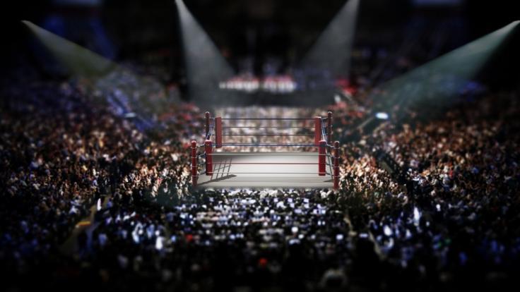 WWE hat wieder zahlreiche Superstars entlassen. (Foto)