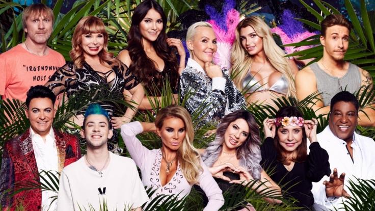 Das Dschungelcamp 2018 startet mit zwölf frischen Promi-Kandidaten bei RTL.