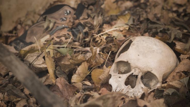 Ein Paar hat in Bolton einen menschlichen Schädel gefunden. (Symbolfoto) (Foto)