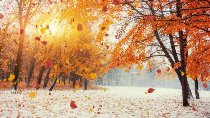 Der Oktober hält aus meteorologischer Sicht einige Überraschungen bereit - Winterwetter inklusive. (Foto)