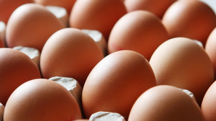 Verbraucher sind verunsichert, nachdem mit dem Insektizid Fipronil belastete Eier in den Handel gelangt sind (Symbolfoto).