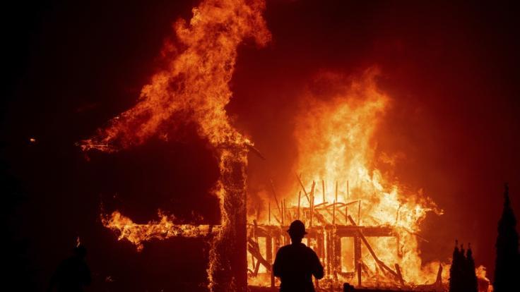 In Kalifornien sind Tausende Menschen vor einem Flammen-Inferno auf der Flucht. (Foto)