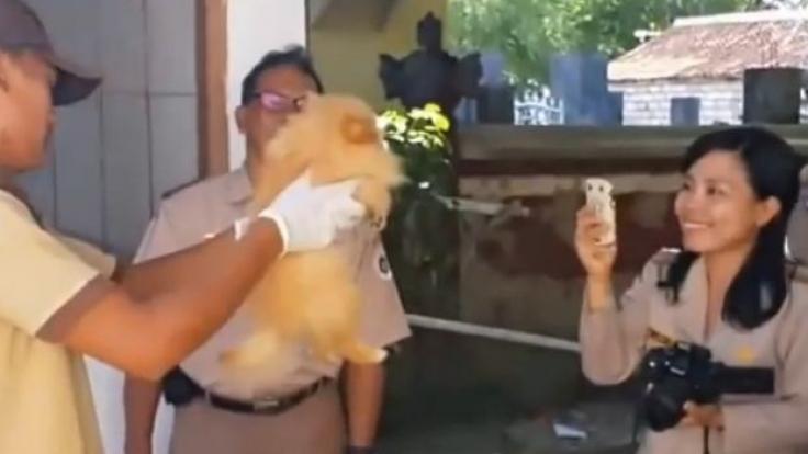 Abartig. Diese Mitarbeiterin macht ein Foto - gleich darauf kommt die Giftspritze. (Foto)