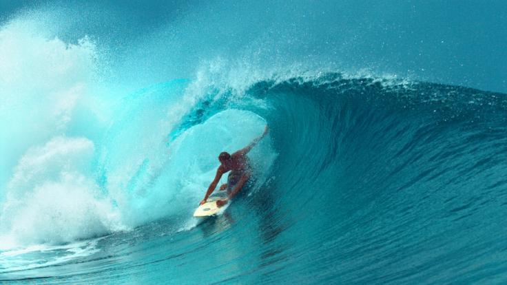 Von Surfer Robert F. fehlt jede Spur. Wurde er Opfer eines Haiangriffs? (Foto)
